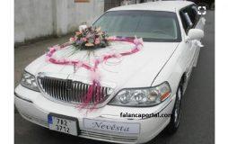 Kalpli Gelin Arabasi Modelleri 1