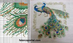 Tavus Kuşu Etamin Pano Modeli 2