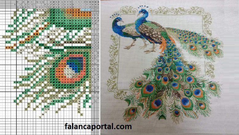 Tavus Kuşu Etamin Pano Modeli