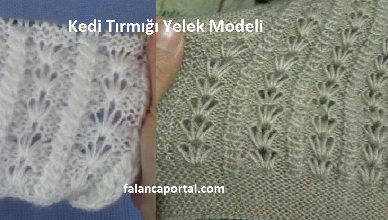 Kedi Tırmığı Yelek Modeli