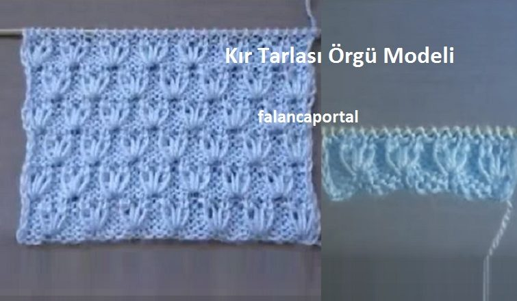 Kir Tarlasi Orgu Modeli 1