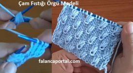 Çam Fıstığı Örgü Modeli 1