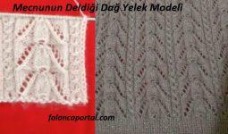 Mecnunun Deldigi Dag Yelek Modeli 1