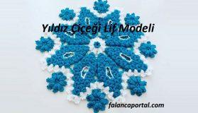 Yıldız Çiçeği Lif Modeli