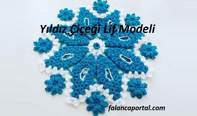Yildiz Cicegi Lif Modeli 1
