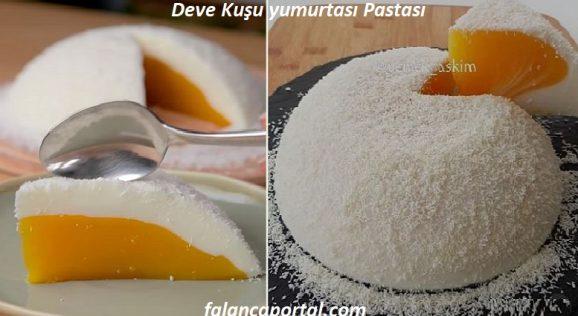 Deve Kuşu yumurtası Pastası 1