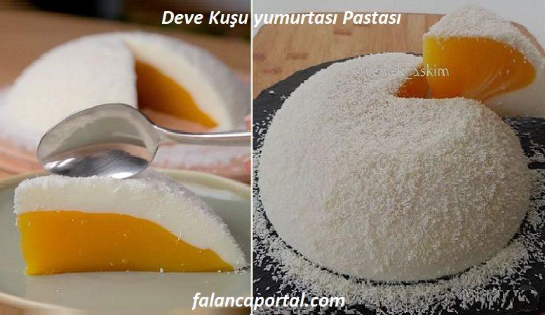Deve Kuşu yumurtası Pastası