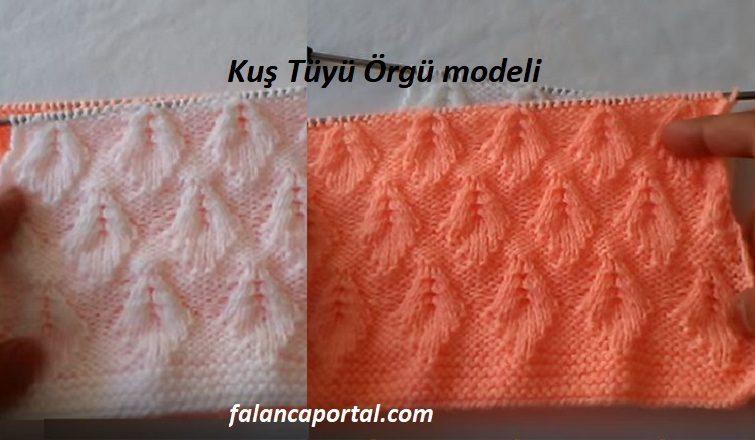 Kus Tuyu Orgu Modeli 1