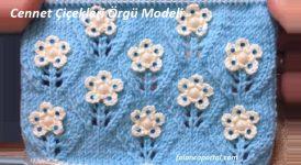 Cennet Çiçekleri Örgü Modeli 1