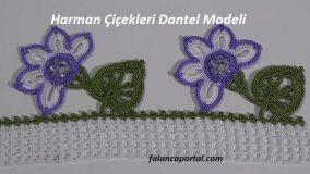 Harman Çiçekleri Dantel Modeli