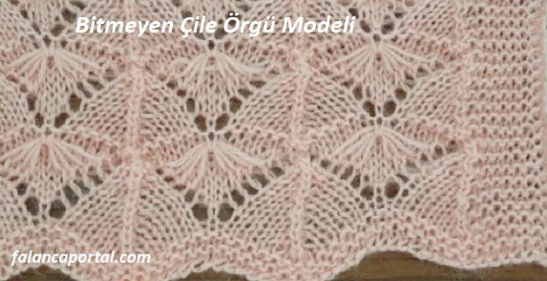 Bitmeyen Çile Örgü Modeli 1