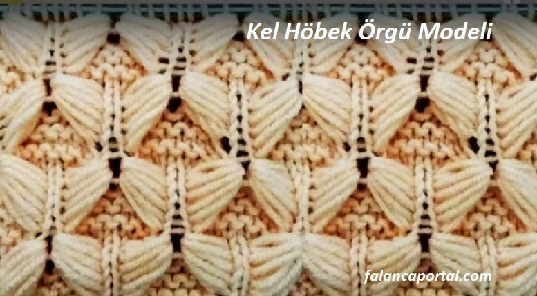 Kel Höbek Örgü Modeli