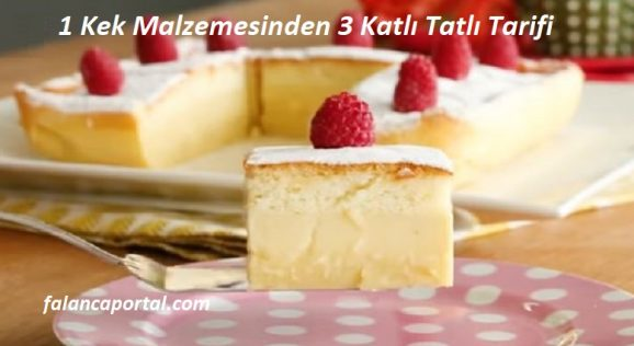 1 Kek Malzemesinden 3 Katlı Tatlı Tarifi 1