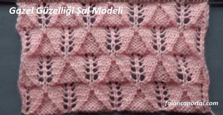 Gazel Güzelliği Şal Modeli 1