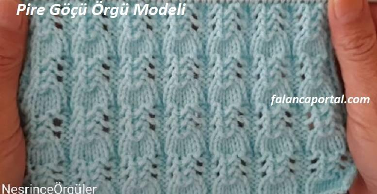 Pire Göçü Örgü Modeli 1