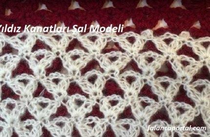 Yıldız Kanatları Şal Modeli