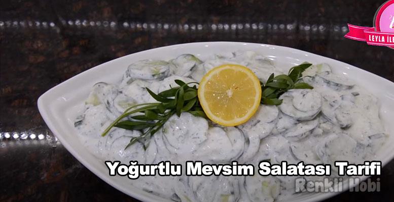Yoğurtlu Mevsim Salatası Tarifi 1