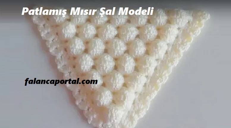 Patlamış Mısır Şal Modeli
