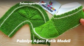 Palmiye Ağacı Patik Modeli