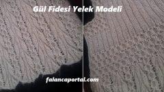 Gül Fidesi Yelek Modeli