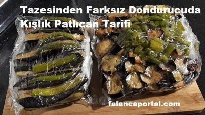Tazesinden Farksız Dondurucuda Kışlık Patlıcan Tarifi