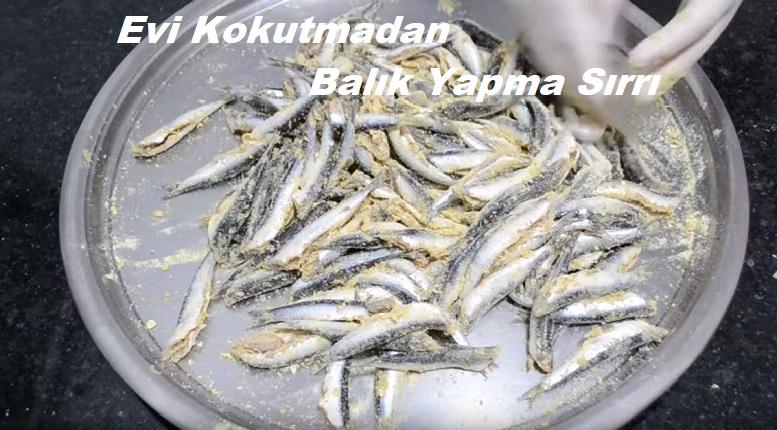 Evi Kokutmadan Balık Yapma Sırrı