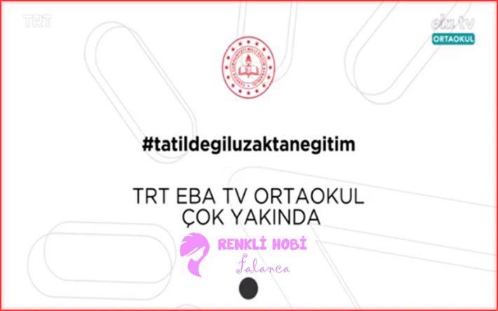 trt-eba-frekans-renklihobi-1