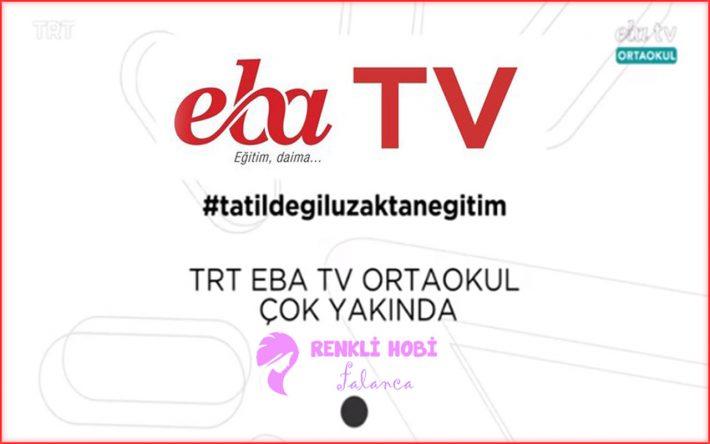 TRT-EBA TV'ye nasıl ulaşılır? Kanal ve Frekans Bilgileri