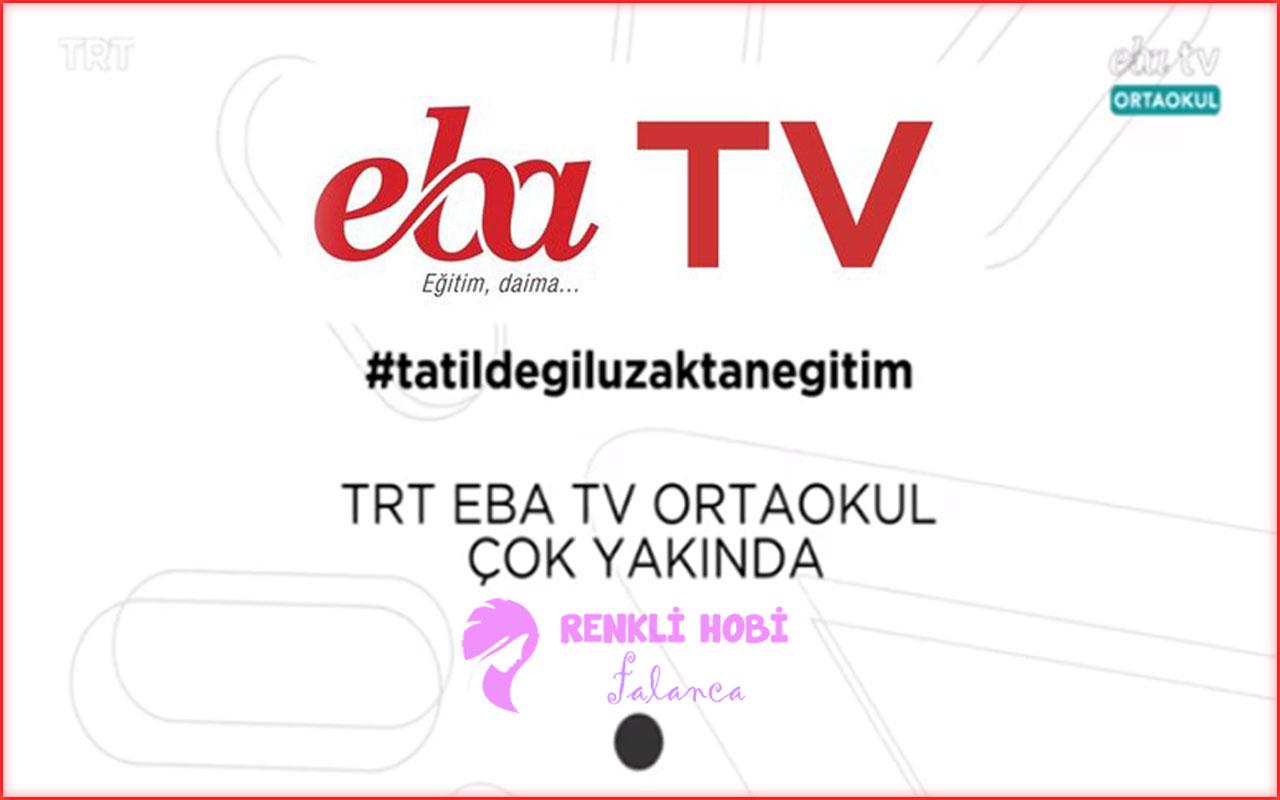 trt-eba-frekans-renklihobi-2