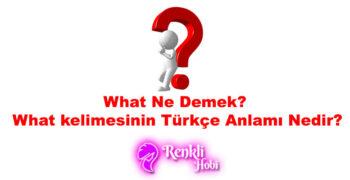What Ne Demek? Türkçe Anlamı Nedir?