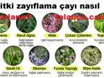 9 Bitki Zayiflama Cayi Yapilisi Yorumlari