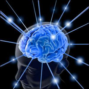 Bilimin Evrenselliği
