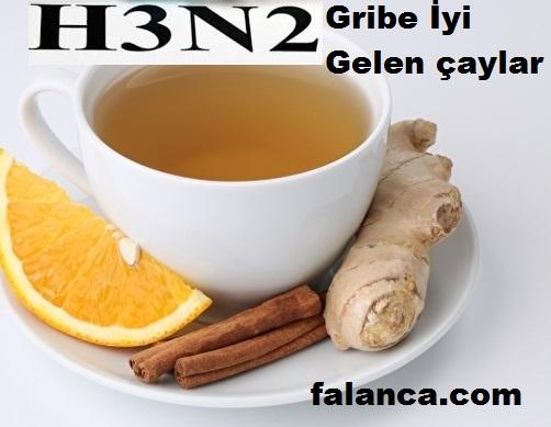 Gribe İyi Gelen Çaylar
