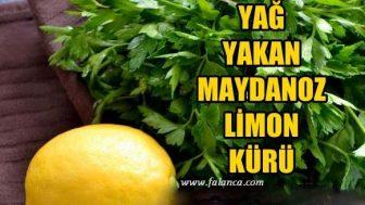 Yağ Yakan Maydanoz Limon Kürü