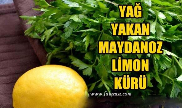 Maydonoz Limon Kuru