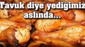 Sağlıklı Diye Yediğiniz Tavuklar Tavuk Değil
