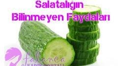 Salatalığın Bilinmeyen Faydaları